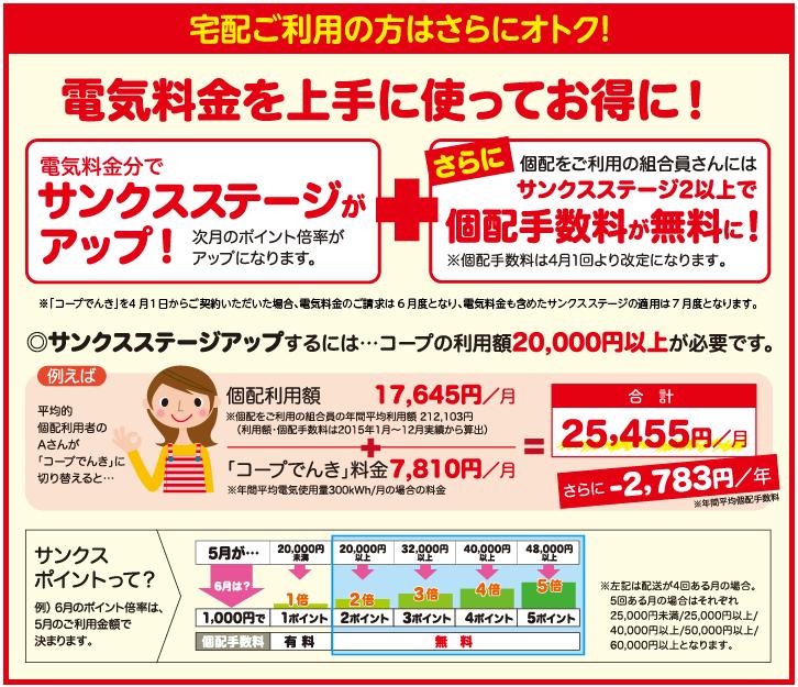 大阪いずみ市民生活協同組合プランのオプション