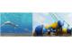 世界初、海流発電の100kW級実証試験、2020年の実用化を目指すの写真