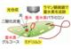 藻のバイオ燃料への転換に道筋、光合成能力を調べる方法開発、九州大学の写真
