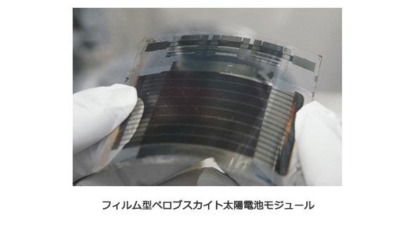 フィルム型ペロブスカイト太陽電池モジュール