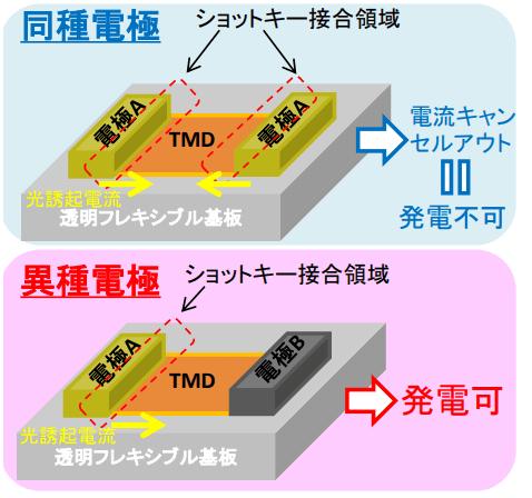 同種電極と異種電極の概略図と特徴