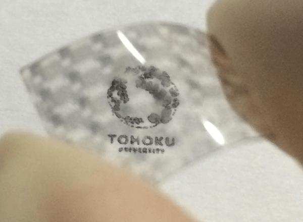 TMDを用いた透明フレキシブル太陽電池