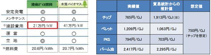 バイオマス発電の費用構造