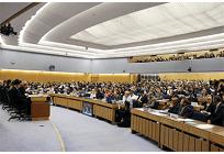 IMO、海運の温室効果ガス「ゼロ」目標、世界初の国際社会による合意の写真